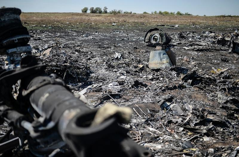 Sunday marks the deadline for relatives of the 298 people who died when flight MH17 was downed over Ukraine to launch action against Malaysia Airlines, which operated the passenger jet (AFP Photo/Bulent Kilic)