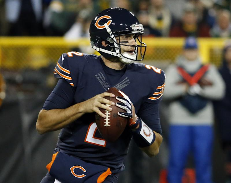 brian hoyer bears jersey