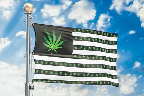 U.S. flag with green cannabis plants on black background where red stripes and white stars usually are.