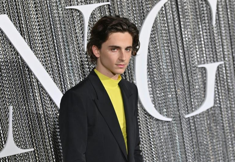 """Timothee Chalamet is the latest US actor to tackle Shakespeare, playing Henry V in """"The King"""""""