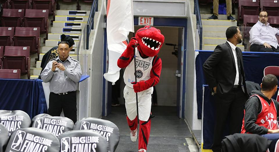 <p>Unfortunately for the Raptors 905, their season came to an early end Tuesday. (Photo courtesy: Trung Ho) </p>