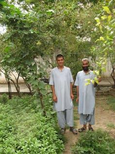 Two men stand in a garden.