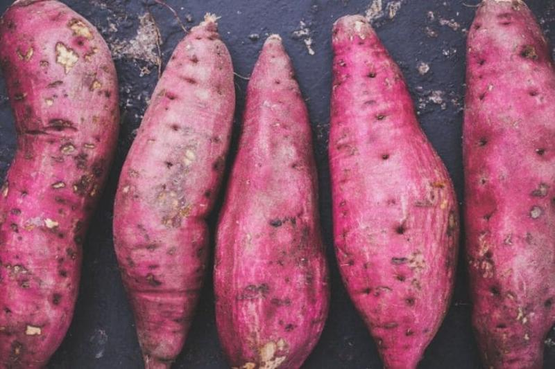 Mystery of Sweet Potato Roots Back to Ancient Mingling between Polynesians and South Americans