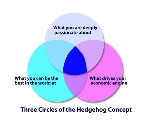 Creating Successful YouTube Channel   Secrets Unveiled image Hedgehog
