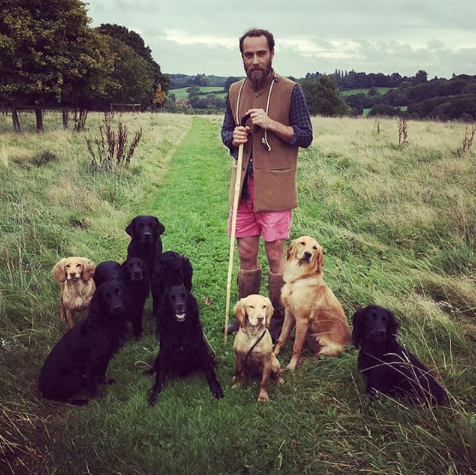 <p>Nothing to see here, just a man and his dogs. </p>
