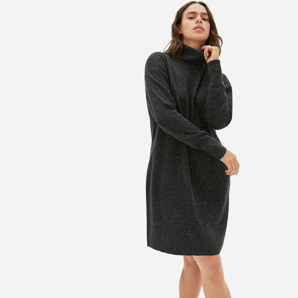 The Cashmere Turtleneck Dress. Image via Everlane.