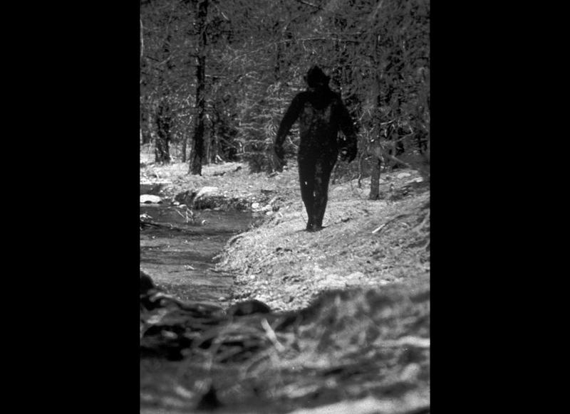 This is a 1977 still photo from a 16 millimeter film made by Ivan Marx reportedly showing the legendary Bigfoot cavorting in the hills of Northern California.