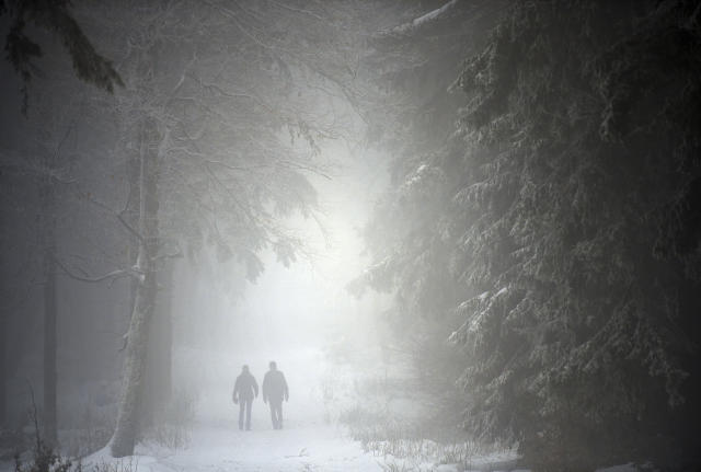 Two people walk on a fogy day, through the forest near Brotterode, Germany, Wednesday, Jan. 16, 2019. (Martin Schutt/dpa via AP)