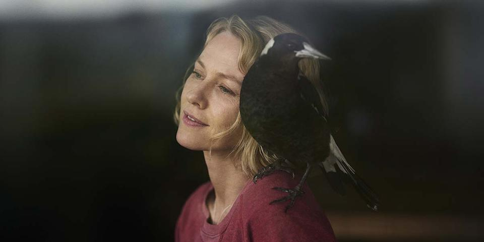 """Naomi Watts stars as a paralyzed woman who mothers a magpie back to health as she recovers as well in """"Penguin Bloom."""""""