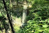 """<p>It's said that the waterfalls throughout <a href=""""https://www.tripadvisor.com/Attraction_Review-g37289-d103667-Reviews-Clifty_Falls_State_Park-Madison_Indiana.html"""" rel=""""nofollow noopener"""" target=""""_blank"""" data-ylk=""""slk:Clifty Falls State Park"""" class=""""link rapid-noclick-resp"""">Clifty Falls State Park</a> reflect the changing seasons: They fluctuate from misty trickles in dry periods to surging, grandiose wonders in the late winter and spring.</p><p><br><a class=""""link rapid-noclick-resp"""" href=""""https://go.redirectingat.com?id=74968X1596630&url=https%3A%2F%2Fwww.tripadvisor.com%2FAttraction_Review-g37289-d103667-Reviews-Clifty_Falls_State_Park-Madison_Indiana.html&sref=https%3A%2F%2Fwww.countryliving.com%2Flife%2Ftravel%2Fg24487731%2Fbest-hikes-in-the-us%2F"""" rel=""""nofollow noopener"""" target=""""_blank"""" data-ylk=""""slk:PLAN YOUR HIKE"""">PLAN YOUR HIKE</a></p>"""