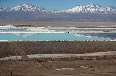 FILE PHOTO: The Wider Image: Water fight raises questions over Chile lithium mining