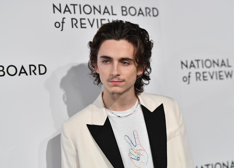 US actor Timothee Chalamet attends the 2020 National Board Of Review Gala on January 8, 2020 in New York City. (Photo by Angela Weiss / AFP) (Photo by ANGELA WEISS/AFP via Getty Images)