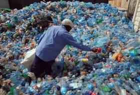 Single-use plastic ban to be implemented by government in phases: Report