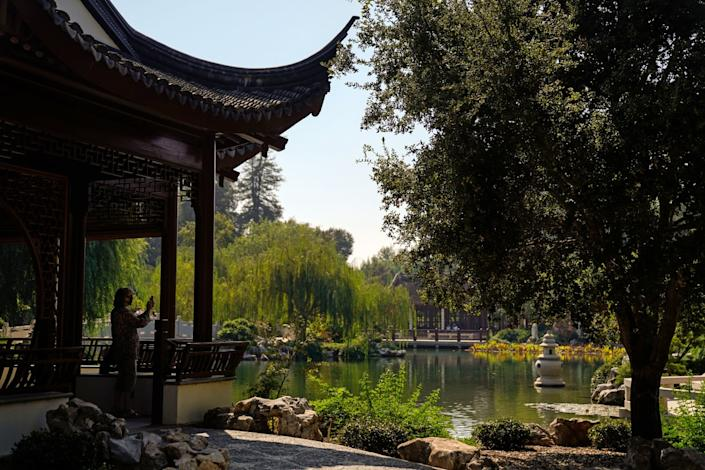 A visitor pauses to take a photograph at the Chinese Garden.