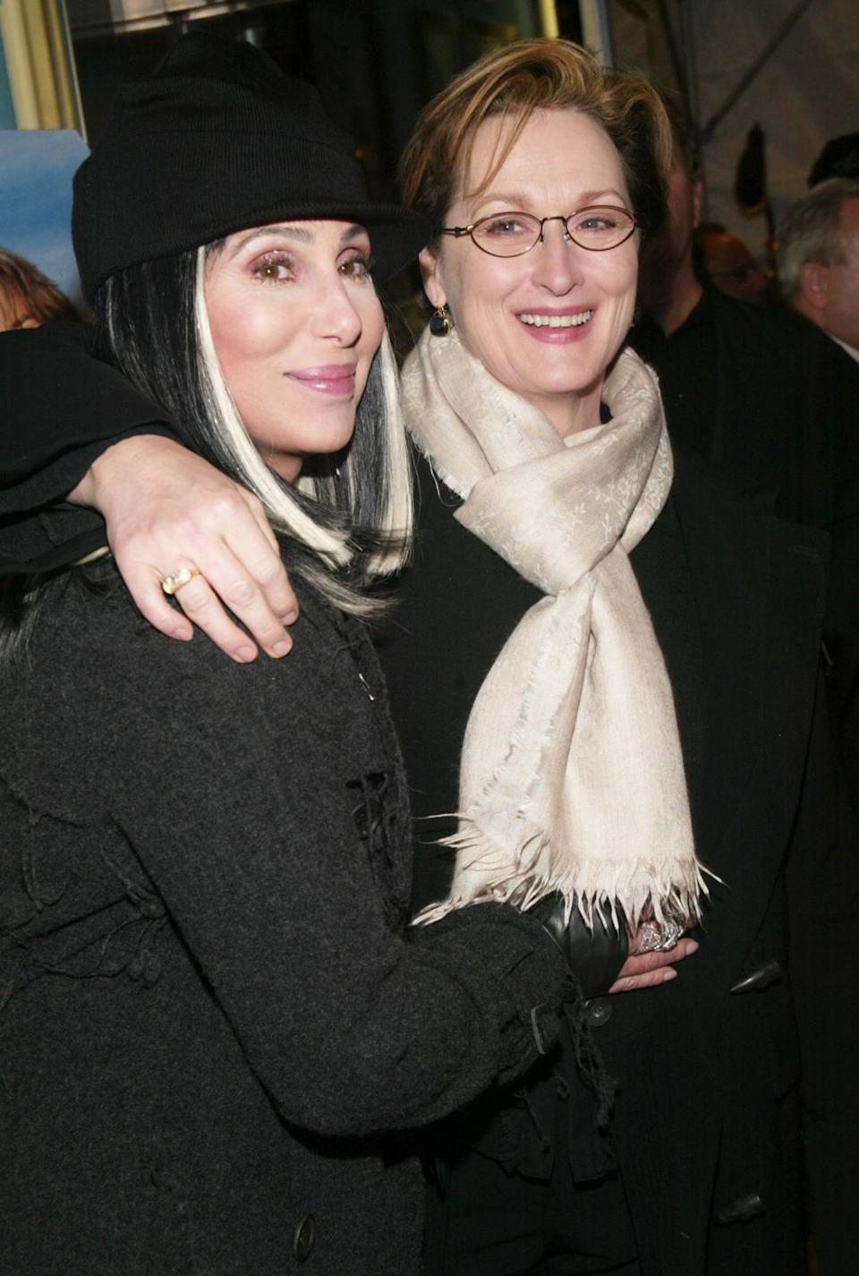 Cher and Meryl starred in 1983 thriller Silkwood.