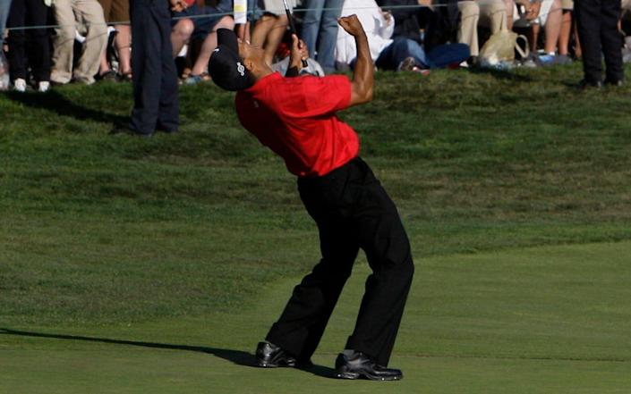 Tiger Woods - Tiger Woods' legendary triumph at Torrey Pines to be commemorated with plaque - AP