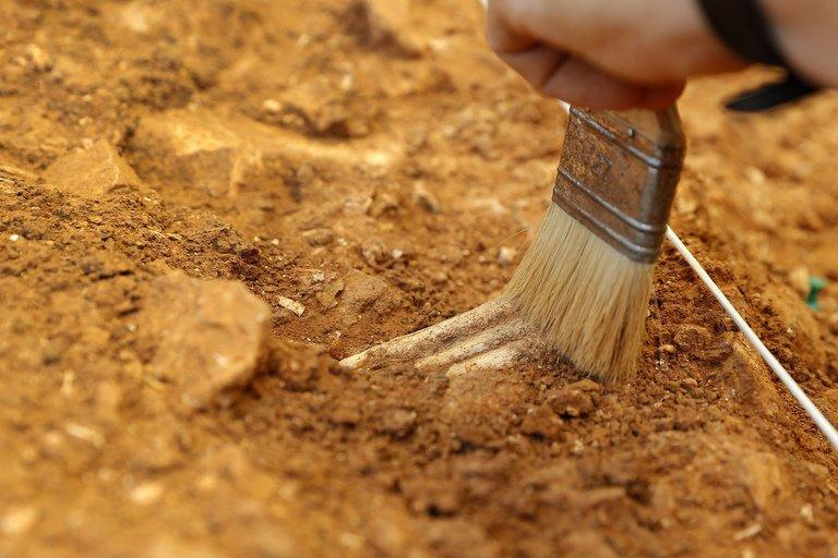 Workers carry out an excavation at the Gran Dolonia site in the caves of Atapuerca on July 11, 2013. With trowels and paintbrushes, dozens of archaeologists in white hard-hats patiently sift the reddish-brown earth, searching for remains a million years old