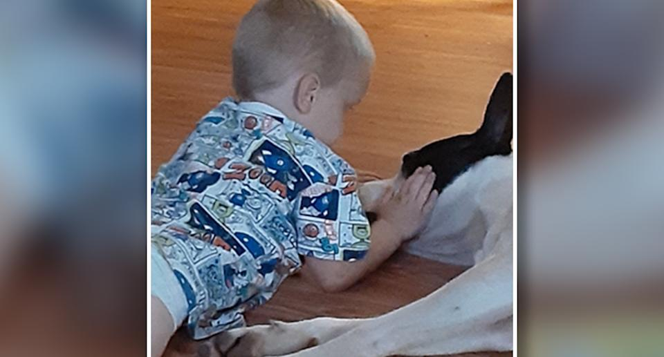 Mr Coiner's son has been left devastated by the death of his pet dog. Source: ABC7