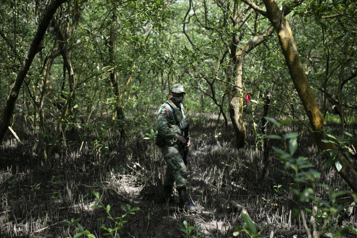 A Mexican Army soldier stands next to a flag marking the site of a clandestine grave in Puquita, a tropical mangrove island near Alvarado in the Gulf coast state of Veracruz, Mexico, Thursday, Feb. 18, 2021. Investigators from the National Search Commission found three pits with human remains and plastic bags inside. The number of bodies there has not yet been determined. (AP Photo/Felix Marquez)