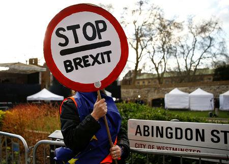 An Anti-Brexit protester is seen outside the Houses of Parliament