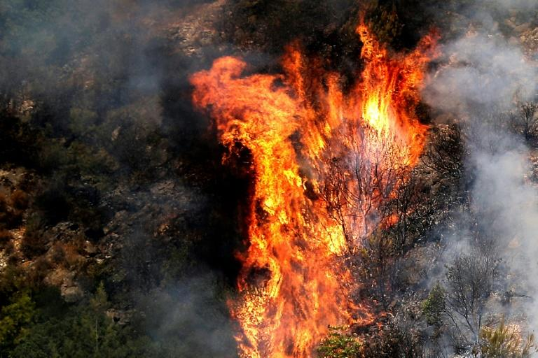 The blazes have devastated parts of the forest in Lebanon's Chouf region (AFP Photo/JOSEPH EID)
