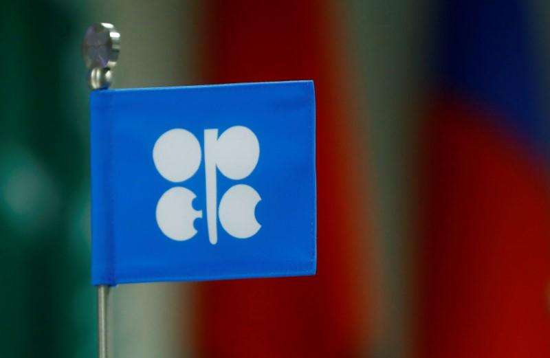 FILE PHOTO: A flag with the Organization of the Petroleum Exporting Countries (OPEC) logo is seen during a meeting of OPEC and non-OPEC countries in Vienna