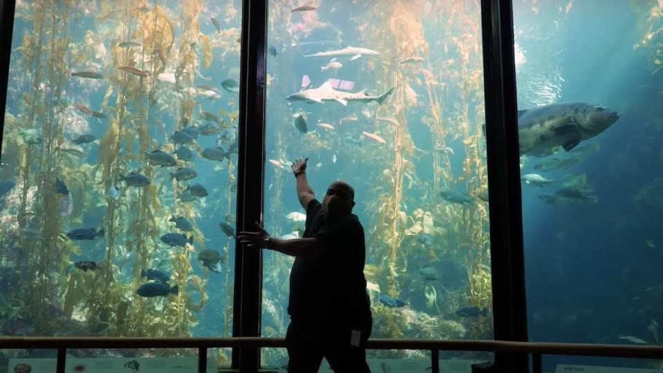 A man with a face mask stands with his arms like a magician showing off a large aquarium tank full of kelp and fish behind him.