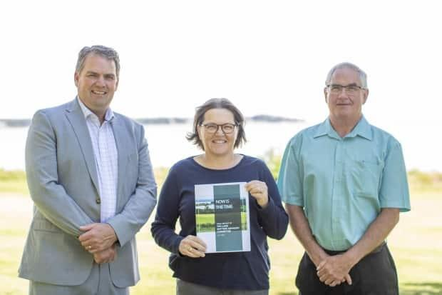 Minister of Agriculture and Land Bloyce Thompson, left, stands with co-chairs of the Land Matters Advisory Committee Lori Robinson and Jim Bradley. (Government of Prince Edward Island - image credit)