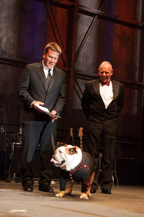This Saturday, Oct. 27, 2012 photo provided by Natural Balance and Thedogphotographer.com shows the bulldog, Tillman, being inducted as an honorary Marine, Private 1st Class, with his trainer, Ron Davis, left, and Sergeant Major Gene Overstreet, on stage at Sky Ball in the American Airlines Hangar at the Dallas/Fort Worth International Airport, in Dallas, Texas. (AP Photo/Natural Balance, The Dog Photographer)