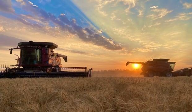 Some farmer advocates say they need legislation to ensure they have the 'right to repair' their own agricultural equipment as machinery becomes increasingly sophisticated. (Submitted by Hannah Konschuh - image credit)