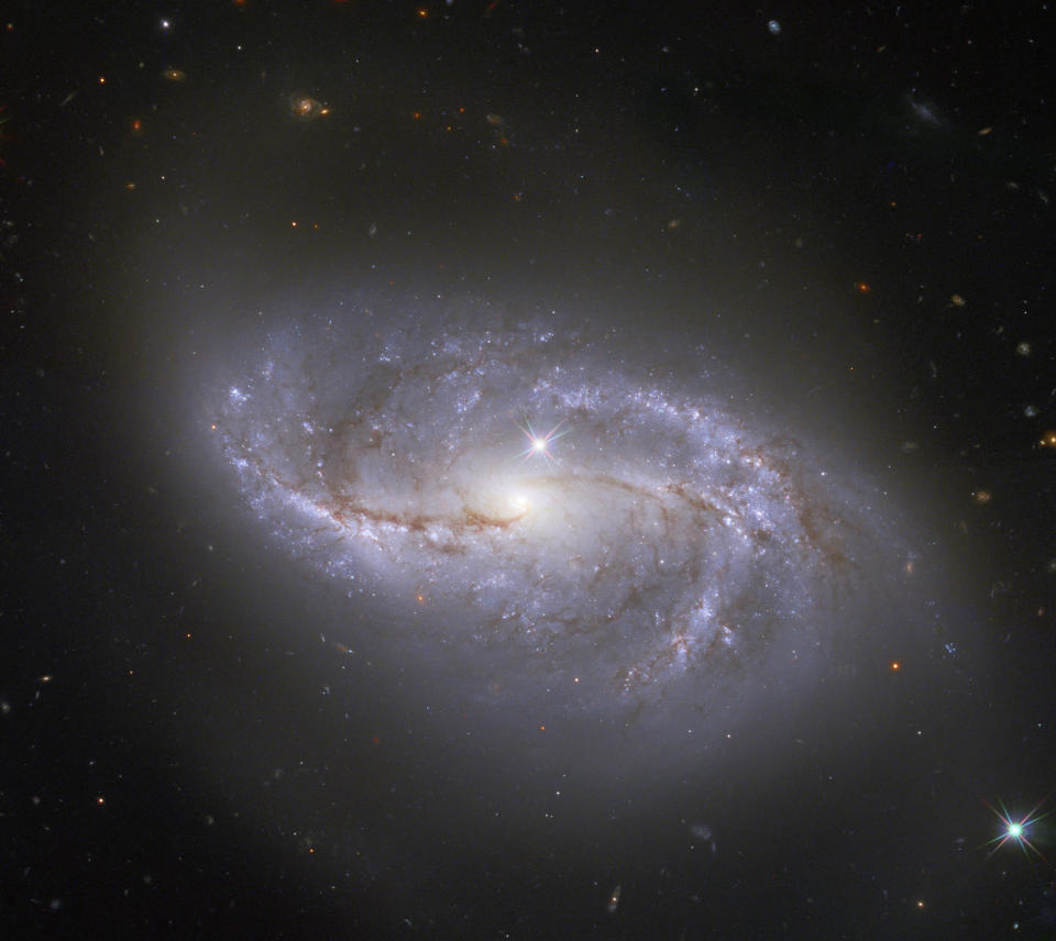 "The spiral galaxy NGC 2608 gets ""photobombed"" by two stars inside our Milky Way galaxy in this new image from the Hubble Space Telescope. Bright Milky Way stars in the foreground of Hubble's deep-space images often appear as lens flares, like the one visible in the bottom right corner of this image. Another is just above the center of NGC 2608. All the other specks of light that pepper the black abyss around the galaxy are not stars, but thousands of other distant galaxies."