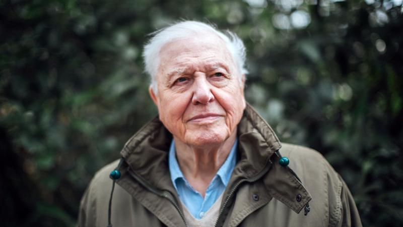 Sir David Attenborough to present 'unflinching' climate change documentary