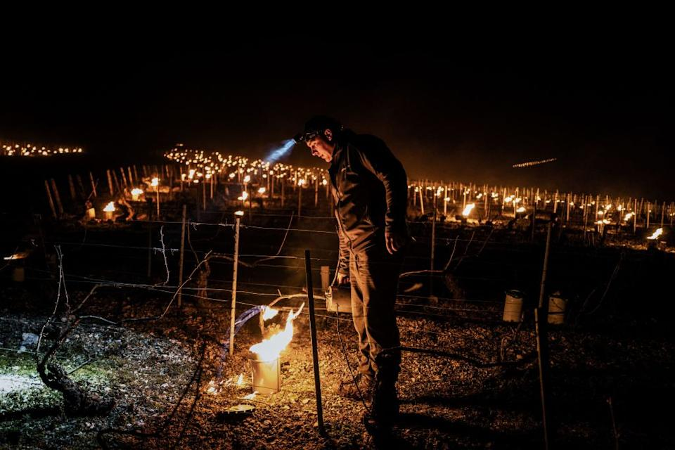 A winegrowers from the Daniel-Etienne Defaix wine estate lights anti-frost candles in their vineyard near Chablis, Burgundy, on April 7. Source: Getty