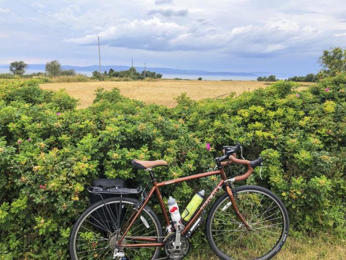 A bicycle rests against a hedge by the St. Lawrence River on Route Verte 1, one of Quebec's prime long-distance bicycling routes, outside the village of Kamouraska, on Sept. 8, 2021. The route takes cyclists through a tapestry of storybook villages, canola fields and hedgerows of wild roses along a broad expanse of the St. Lawrence River. It's once again accessible to Americans and other outsiders as long as they're vaccinated and meet the other conditions for admission into Canada in the COVID era. (AP Photo/Calvin Woodward)