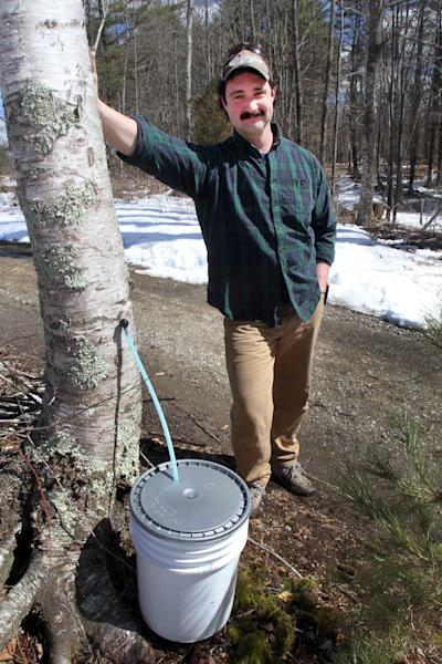 In this Wednesday, March 28, 2013 photo, David Moore of the Crooked Chimney sugarhouse poses in front of one of his tapped white birch trees, in Lee, N.H. Moore, New Hampshire's only known commercial birch syrup producer, got his start in 2008, when he was a student at the University of New Hampshire. (AP Photo/Jim Cole)