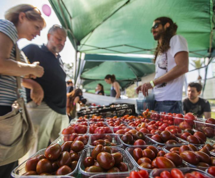 Different varieties of bio cherry tomatoes are displayed during the 'Vegan Fest' fair in the Israeli city of Ramat Gan, near Tel Aviv, on October 13, 2014 (AFP Photo/Jack Guez)