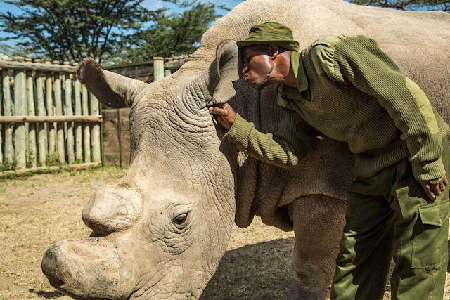 Keeper Zacharia Mutai gives Sudan a kiss.