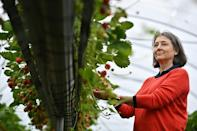 Hugh Lowe Farms is a family business with current managing director Marion Regan having taken over from her father, Hugh Lowe, who had succeeded his grandfather in running the operation