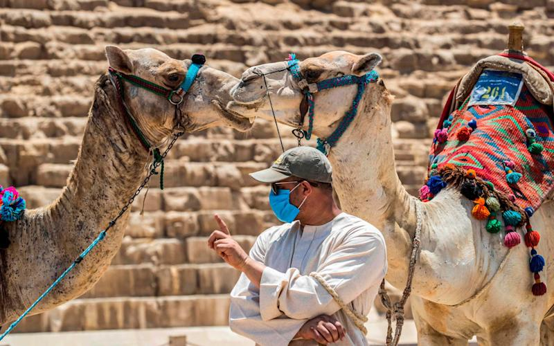 Cafes, shops and camel guides are allowed to operate again - AFP