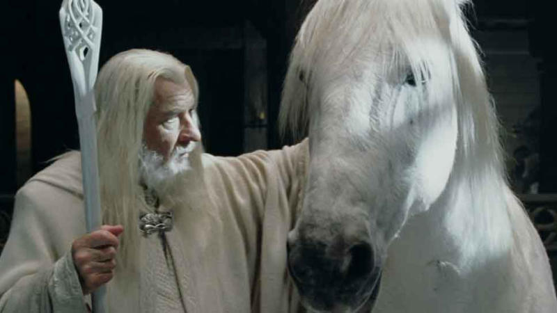 Shadowfax in the 'Lord of the Rings' movies. (Credit: Warner Bros)