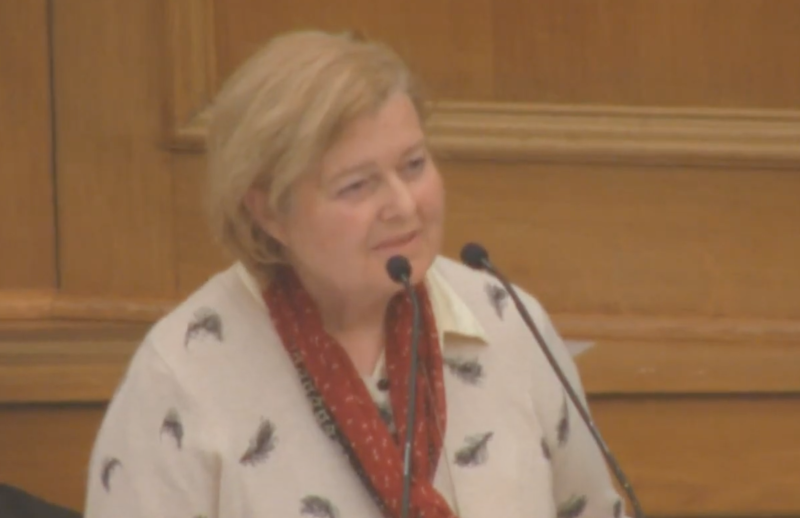 Mary Durlacher raises coronavirus concerns at the General Synod meeting (Church of England/YouTube)