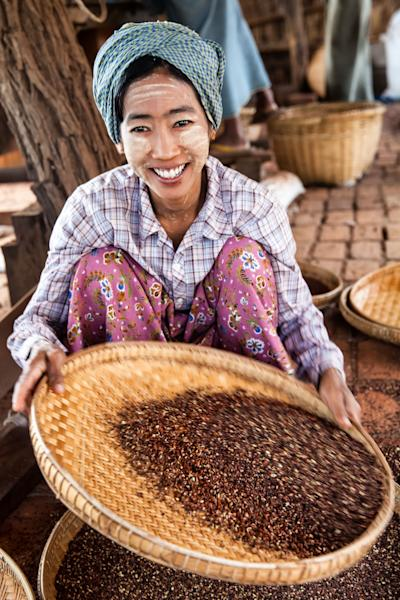 This December 2012 photo shows a woman sifting plum seeds used in the manufacture of herbal heart medicine, in Phwarsaw Village in Bagan, Myanmar. It's common for women to chalk their faces with thanaka, a paste made from tree bark, as makeup and sunscreen. (AP Photo/Richard Camp)