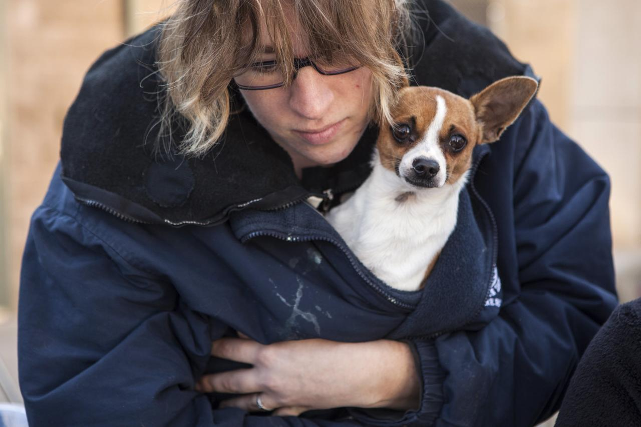 Front Street Animal Shelter animal care technician Jennifer Channell holds one of 50 dogs being prepared for a flight to a no-kill shelter in Idaho, in Sacramento, California December 9, 2013. Picture taken December 9, 2013. REUTERS/Max Whittaker (UNITED STATES - Tags: ANIMALS SOCIETY)