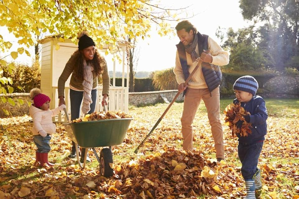 "With winter on the horizon, many home gardeners are spending their days raking leaves and trimming back branches, hoping they can keep their plants healthy and protected before the snow starts to fall. However, it takes more than just a few passes with the leaf blower to fully <a href=""https://bestlifeonline.com/fall-home-upgrades/?utm_source=yahoo-news&utm_medium=feed&utm_campaign=yahoo-feed"" rel=""nofollow noopener"" target=""_blank"" data-ylk=""slk:prep your yard before winter"" class=""link rapid-noclick-resp"">prep your yard before winter</a>. If you want a <a href=""https://bestlifeonline.com/perfect-lawn-tips/?utm_source=yahoo-news&utm_medium=feed&utm_campaign=yahoo-feed"" rel=""nofollow noopener"" target=""_blank"" data-ylk=""slk:lush lawn"" class=""link rapid-noclick-resp"">lush lawn</a> and a healthy garden come springtime, here's everything you need to do before it gets blustery out there. <div class=""number-head-mod number-head-mod-standalone""> <h2 class=""header-mod""> <div class=""number"">1</div> <div class=""title"">Skip your fall cleanup.</div> </h2> </div>"