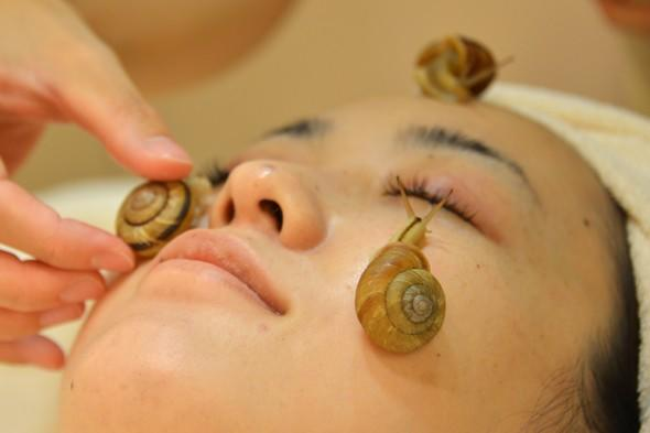 Japanese spa offers live snail facial