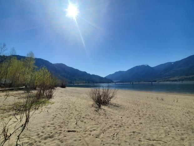 Kilby Provincial Park on the Harrison River has 35 campsites. (Submitted to CBC - image credit)