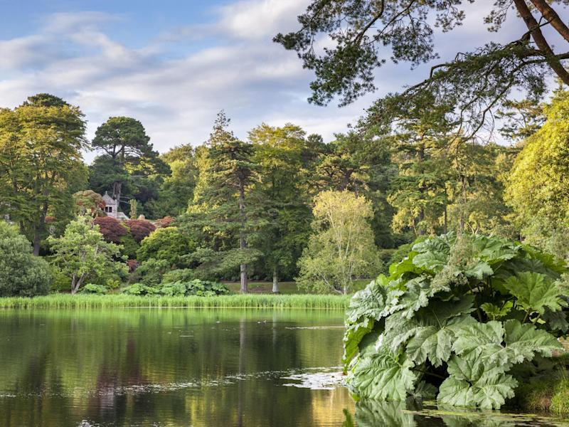 A lake at the National Trust's Mount Stewart site, Co. Down, Northern Ireland: PA