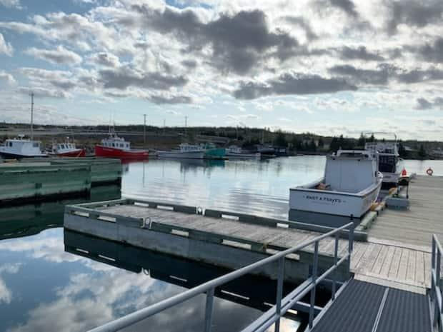 Many people on Isle Madame earn their living by fishing.  (Submitted by Brandon Boudreau - image credit)
