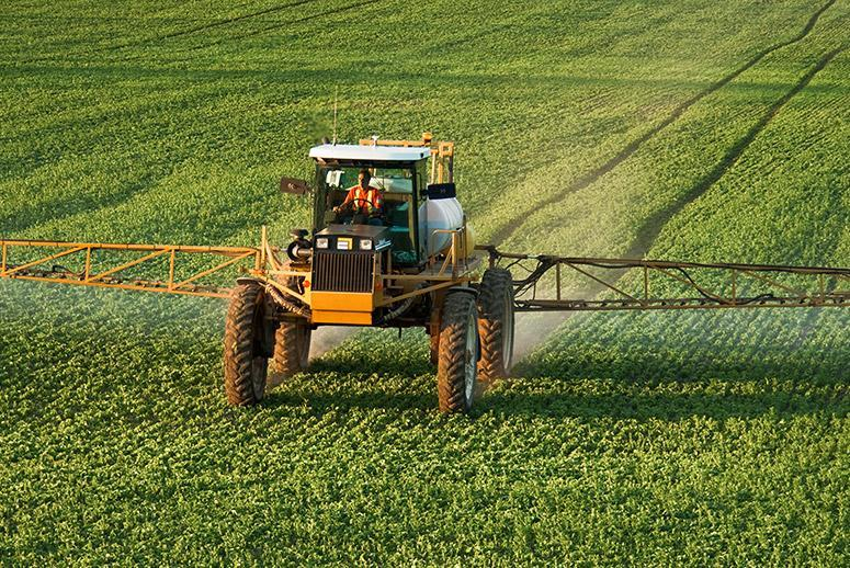 Monsanto's Superweeds Saga Is Only Getting Worse