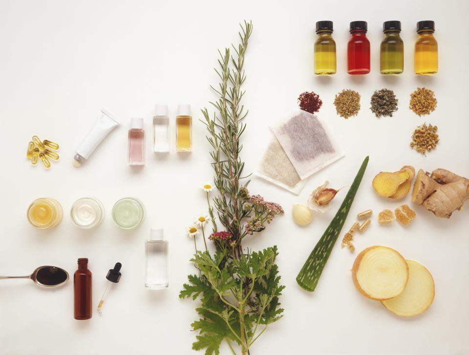 A Guide to Choosing the Best Holistic Doctor for Your Needs